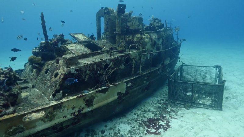 Reef Wrecks episode 5 – Mexico's Artificial Reefs