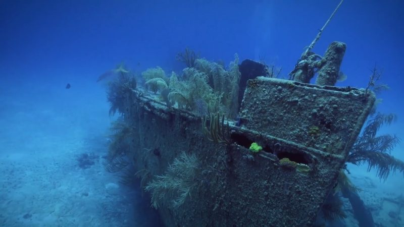 Reef Wrecks episode 3 – Bahamas