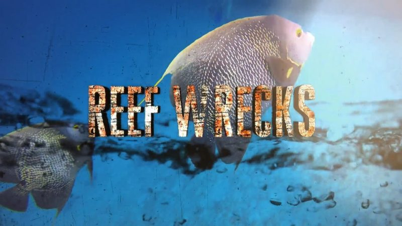 Reef Wrecks episode 4 – Roatan