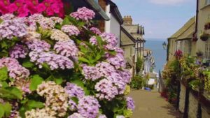 Read more about the article Britain in Bloom episode 2 2019