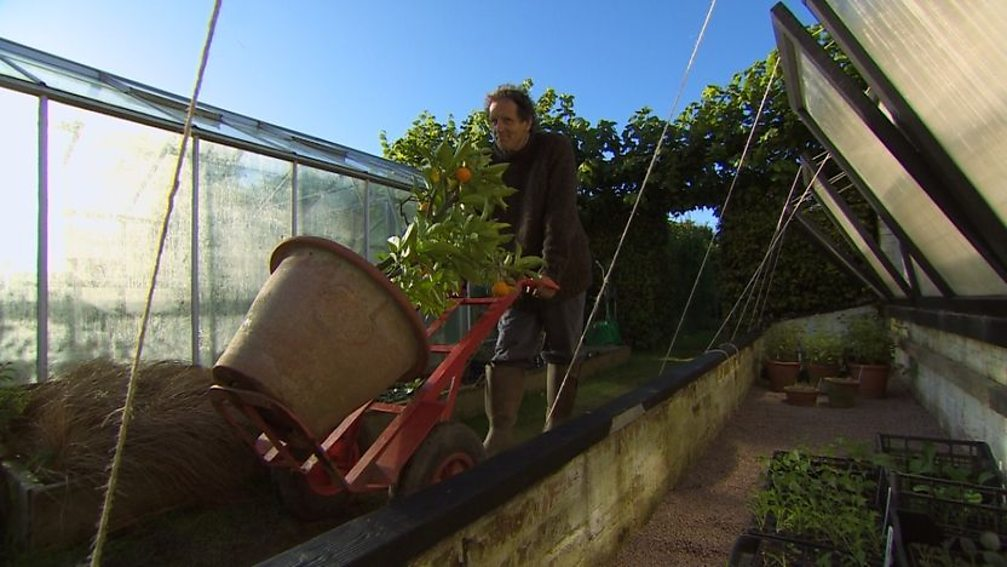 Read more about the article Gardeners World episode 27 2012