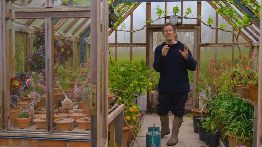 Read more about the article Gardeners World episode 8 2019