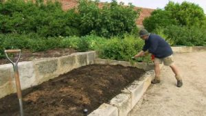 Read more about the article Gardening Australia episode 12 2019 – Easter Special
