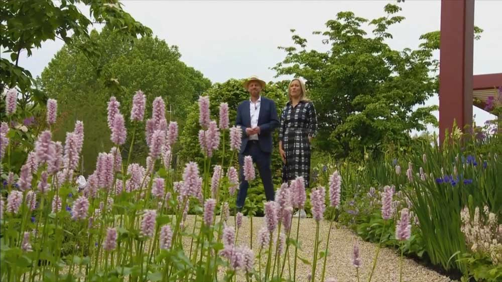 Read more about the article Chelsea Flower Show episode 1 2019