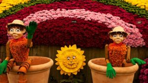 Read more about the article Chelsea Flower Show episode 13 2019