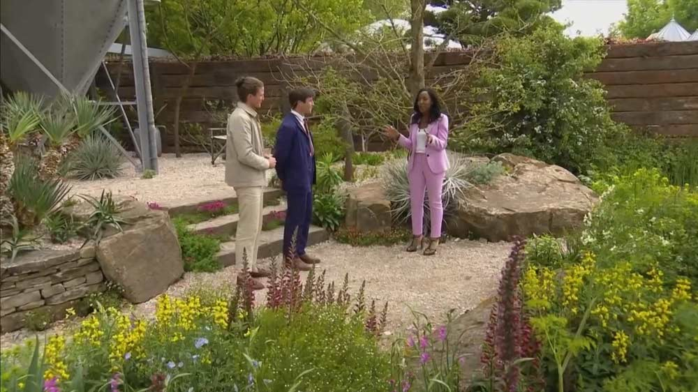 You are currently viewing Chelsea Flower Show episode 2 2019