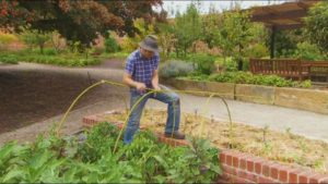Read more about the article Gardening Australia episode 17 2019