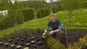 Read more about the article The Beechgrove Garden episode 6 2019