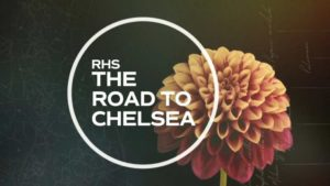 The Road to Chelsea Flower Show 2019