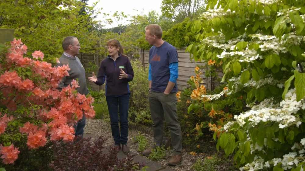 Read more about the article The Beechgrove Garden episode 7 2019