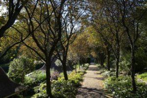 Gardens Near and Far episode 9 –  Dumbarton Oaks