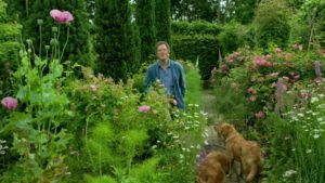 Read more about the article Gardeners World episode 16 2019