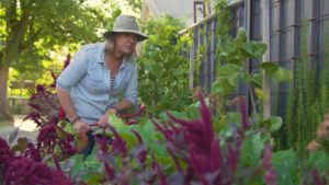 Read more about the article Gardening Australia episode 19 2019