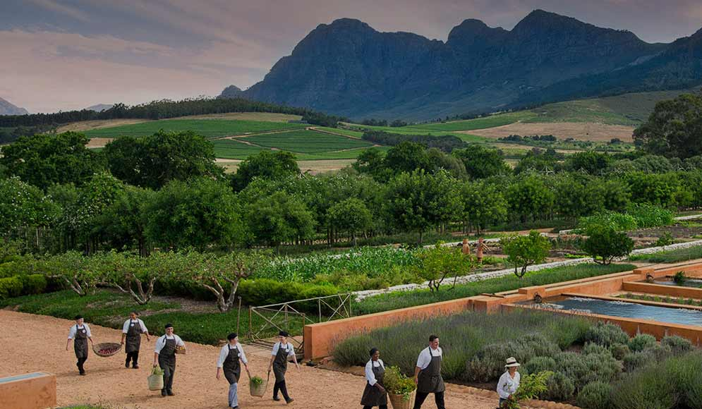 Gardens Near and Far episode 3 - Babylonstoren, South Africa