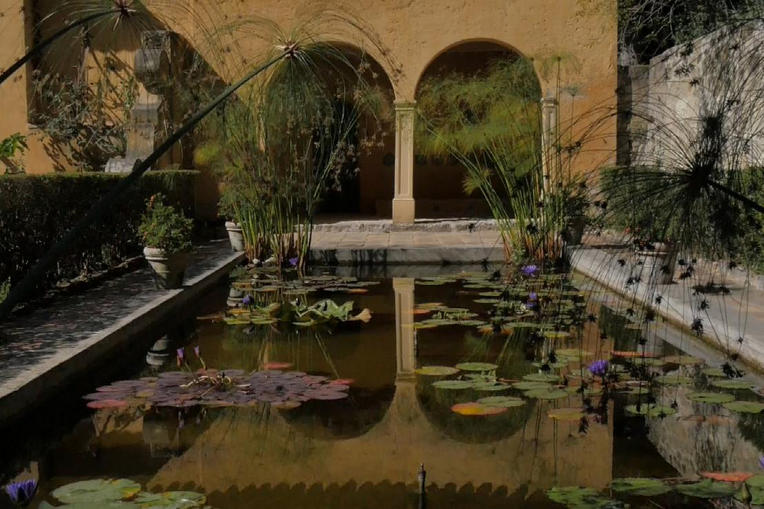 You are currently viewing Gardens Near and Far episode 12 –  Serre de la Madone