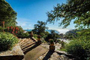 Gardens Near and Far episode 26 – Domaine du Rayol