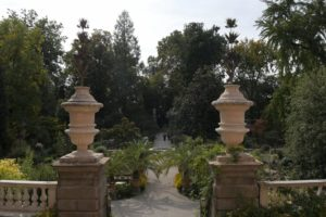 Read more about the article Gardens Near and Far episode 20 – Garden of Padua