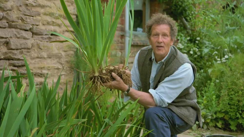 Read more about the article Gardeners World episode 19 2019