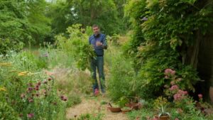 Read more about the article Gardeners World episode 20 2019