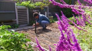Read more about the article Gardening Australia episode 23 2019