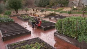 Read more about the article Gardening Australia episode 24 2019