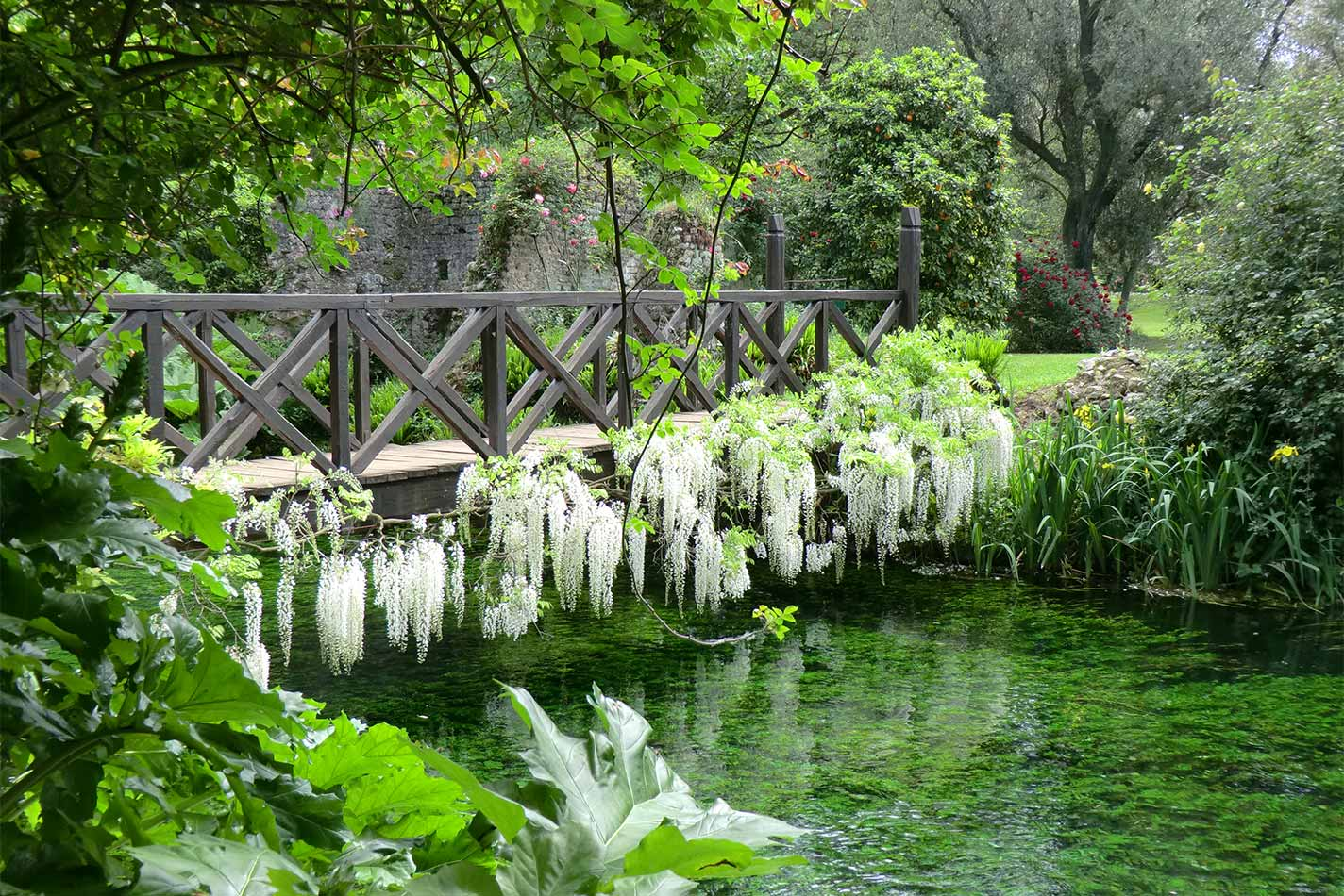 Read more about the article Gardens Near and Far episode 23 – Ninfa