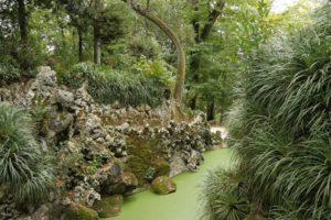 Gardens Near and Far episode 25 – Quinta da Regaleira
