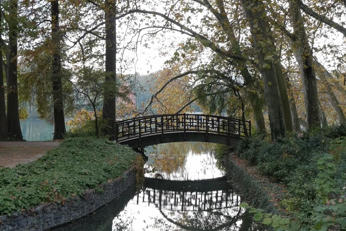 You are currently viewing Gardens Near and Far episode 13 – Tête d'Or