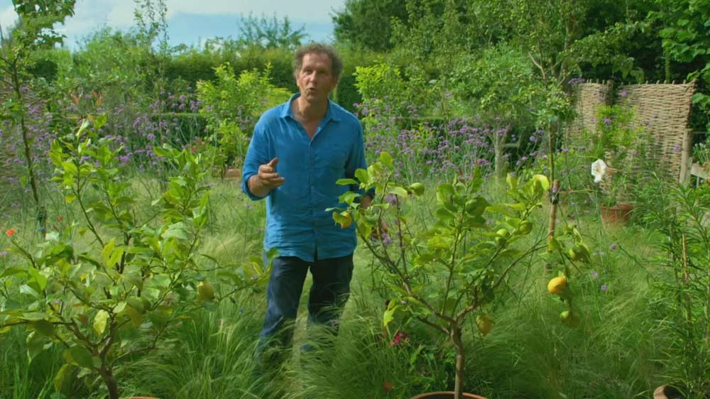 You are currently viewing Gardeners World episode 21 2019