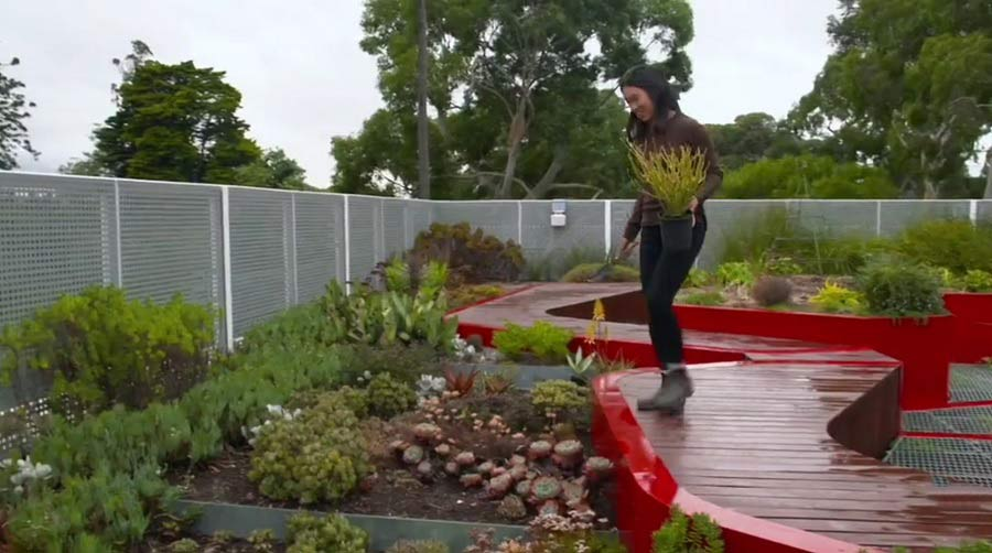 Gardening Australia episode 27 2019