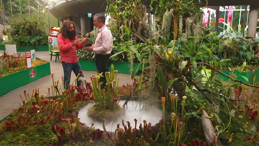 Read more about the article Gardening Australia episode 28 2019