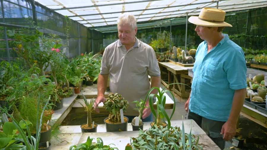 Read more about the article Gardening Australia episode 29 2019