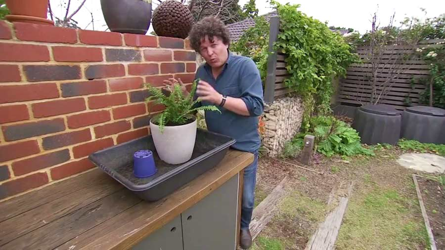Read more about the article Gardening Australia episode 30 2019
