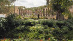 Gardens Near and Far episode 32 – Jnan Sbil