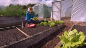 Read more about the article The Beechgrove Garden episode 12 2019