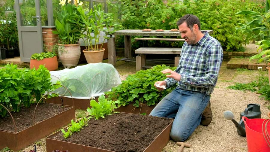 Read more about the article Gardeners World episode 26 2019