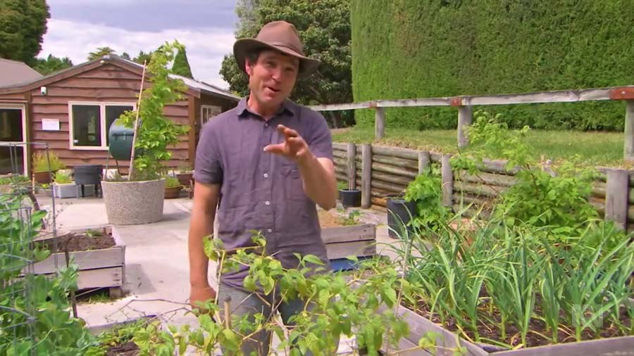 Read more about the article Gardening Australia episode 32 2019