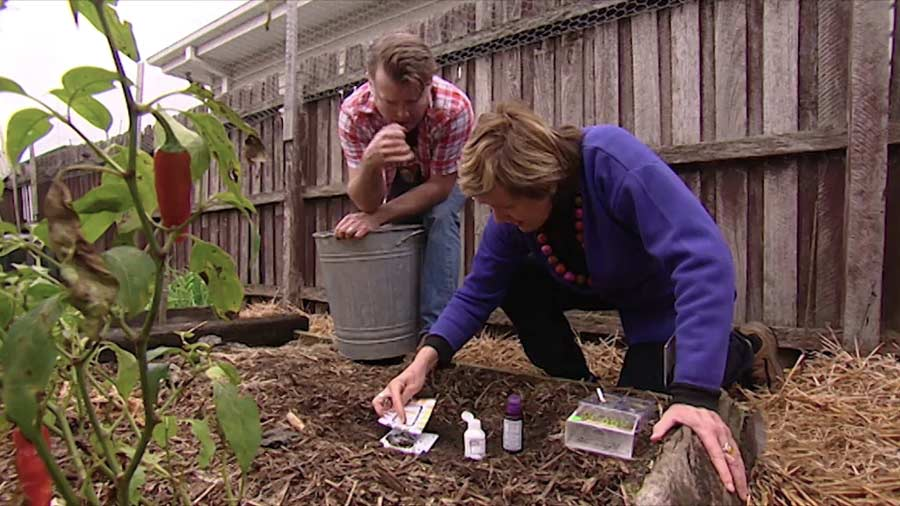 Read more about the article Gardening Australia episode 35 2019