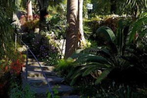 Gardens Near and Far episode 34 – La Mortella