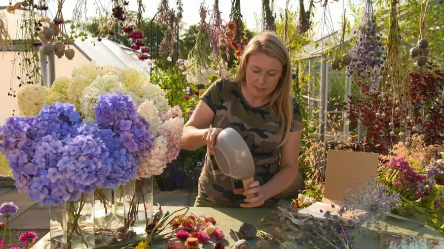 The Beechgrove Garden episode 14 2019