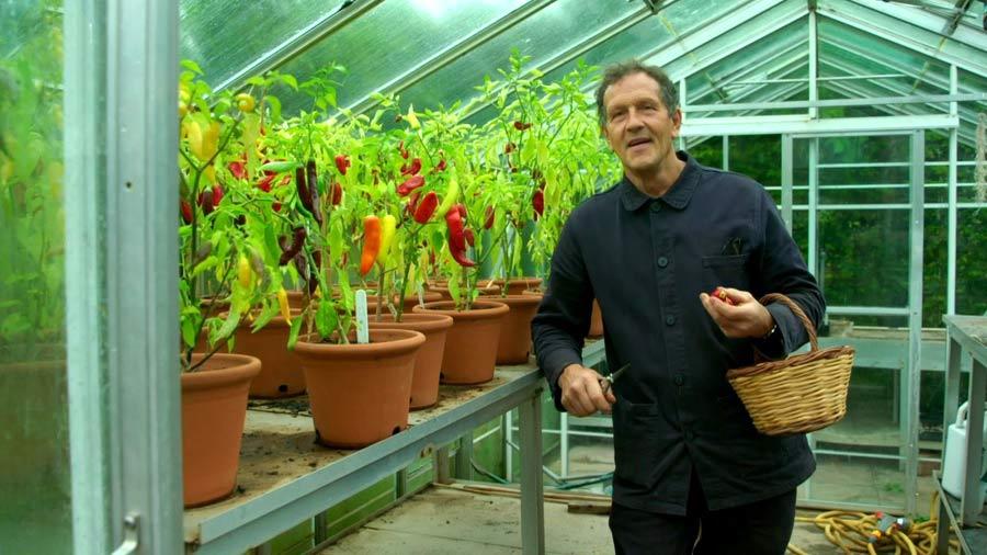 Gardeners World episode 30 2019