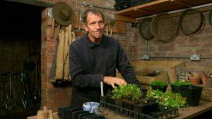 Gardeners World episode 30 2019 - Raspberry