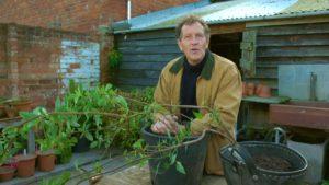 Gardeners World episode 32 2019