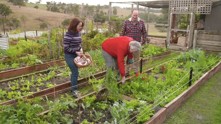 Read more about the article Gardening Australia episode 38 2019