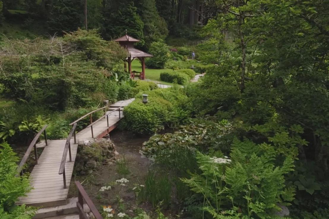 Gardens Near and Far episode 40 – Powerscourt