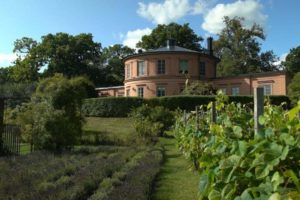 Read more about the article Gardens Near and Far episode 41 – Rosendal