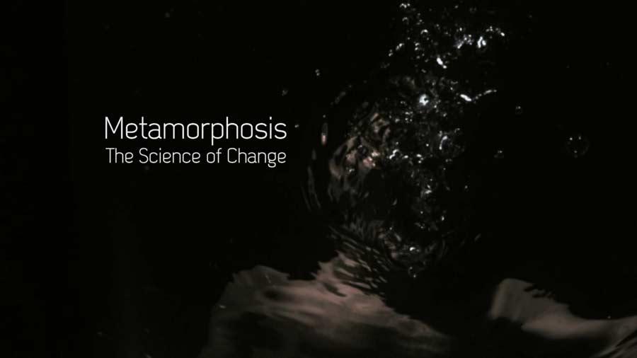 Metamorphosis - The Science of Change