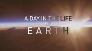 Read more about the article A Day in the Life of Earth