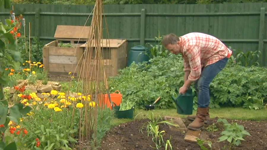 The A to Z of TV Gardening – Letter L