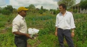 Read more about the article Gardeners World Horticultural Special 2005